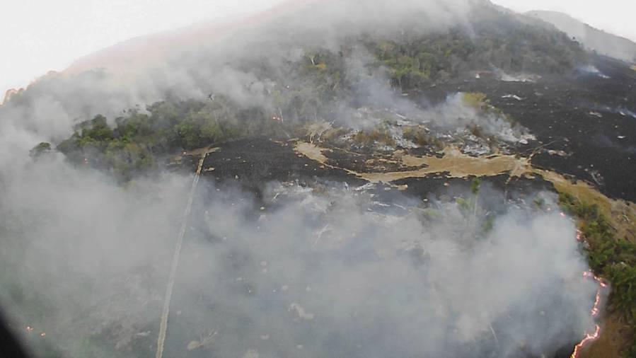 Die Lunge der Welt brennt: So verheerend sind die Brände im Amazonas