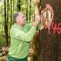 Mit dem Förster durch den leidenden Wald