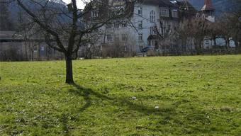 Hier auf der Brunnerwiese in Balsthal, nahe der alten Bezirksschule, käme der HPS-Neubau zu stehen.