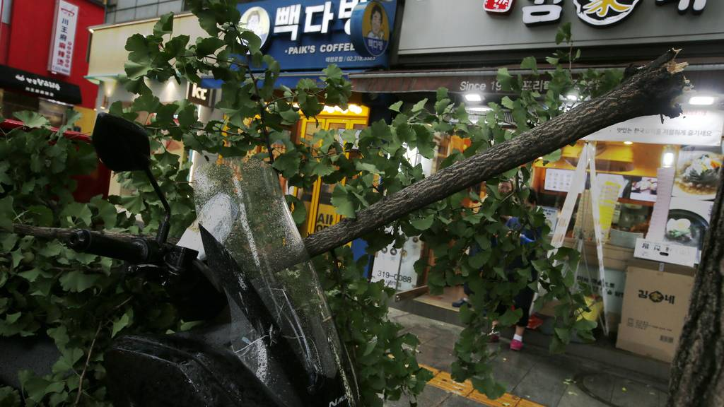 Drei Tote durch Taifun «Lingling» in Südkorea
