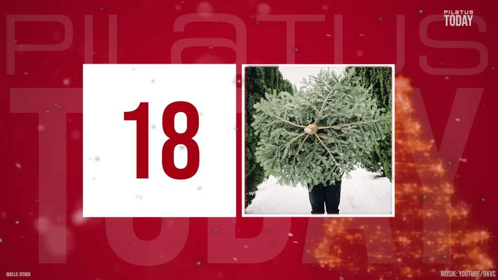 Türchen 18: Alles rund um den Weihnachtsbaum