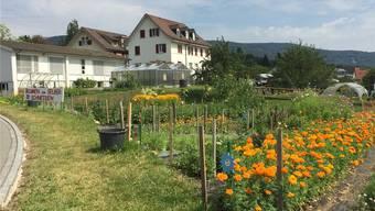 Wechselt für 3,1 Millionen Franken den Besitzer: Die 69 Aren grosse Liegenschaft mit den Gebäuden des «Heilsarmee-Obstgartens». Urs helbling