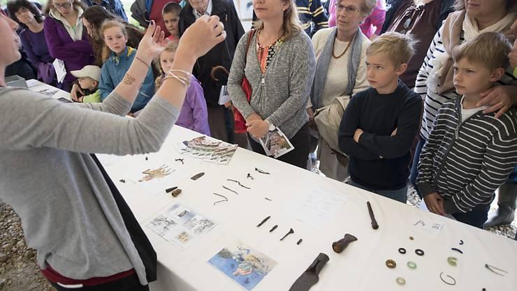 Zahlreiche Personen lassen sich die keltischen Objekte erklären.