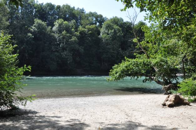 Hier an dieser Stelle in Bremgarten ging die Schulklasse ins Wasser. Es ist ein beliebter Ort  zum Baden.