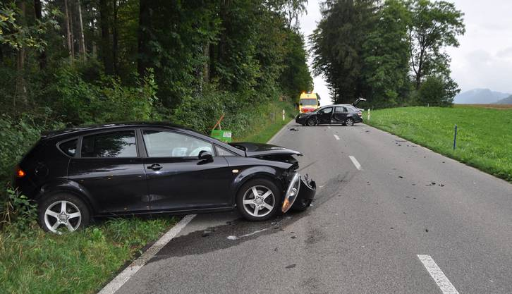 Anschliessend verlor er die Herrschaft über sein Auto und kollidierte frontal-seitlich mit einem entgegenkommenden Fahrzeug eines 62-jährigen Autolenkers.  Der junge Lenker musste mit leichten Verletzungen ins Spital gebracht werden.