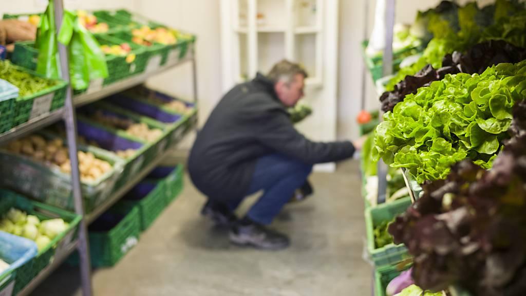 Städter holen sich ihr Gemüse auf dem Bauernhof