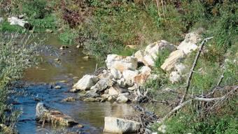 Der Bachlauf der Dünnern in Welschenrohr ist wieder revitalisiert.