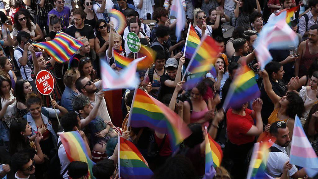 Tausende an der verbotenen Gay-Pride-Parade