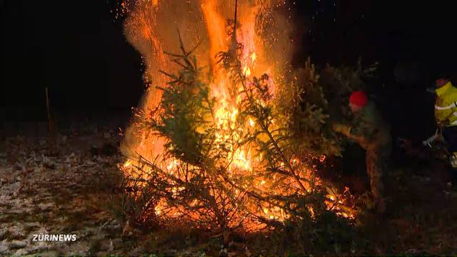 Gemeinschafts-Christbaumverbrennen in Stadel