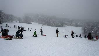 Die Schneemassen dürften im Flachland nur noch wenige Tage liegenbleiben. (Symbolbild)