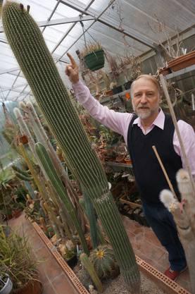 Hobbybotaniker Michel Gelbert verschenkt seinen 50-jährigen mexikanischen Säulenkaktus an den Botanischen Garten in St Gallen.