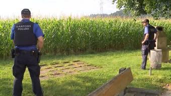 Wenn ein Maisfeld mit genügend Polizisten umstellt werden kann, ist die Chance auf ein Entkommen gering.