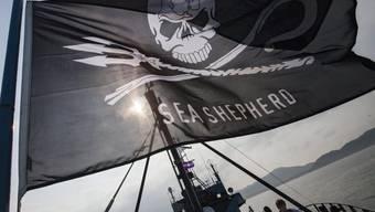 """Die Flagge von Sea Shepherd weht auf ihrem Flaggschiff """"Steve Irwin"""". (Archivbild)"""