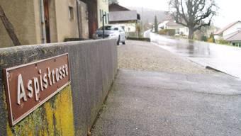 In und um die Aspistrasse in Dottikon gehören zwei Einfamilienhäuser und eine Eigentumswohnung zum Besitz von V.W.