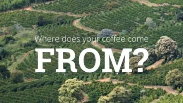 Kaffee vom Bauern direkt zum Kunden: Oltner wollen den Markt umkrempeln