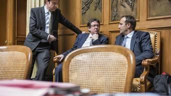 SVP-Nationalrat Mörgeli (links) kritisiert das Vorhaben