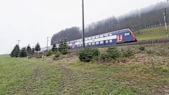 Entlang der Linie nach Bülach sind in Eglisau mehrere Abstellgleise für S-Bahn-Züge geplant.