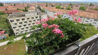 Blick vom achten Stock des Felix-Platter-Spitals aufs ehemalige Personalhaus: Anfang Monat sind Asylsuchende eingezogen.Andreas Maurer