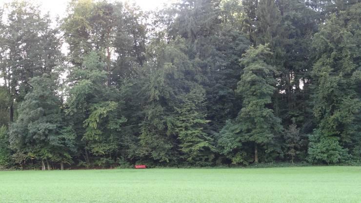 Begegnungsplatz im Mittelpunkt der Gemeinde Veltheim