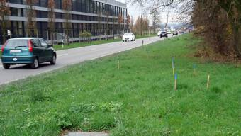 Das bereits profilierte Areal für die neue Bushaltestelle an der Aarauerstrasse auf Höhe der Stiftung für Behinderte.