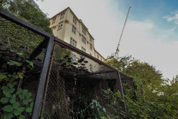 Die ehemaligen Bauten des zoologischen Instituts.