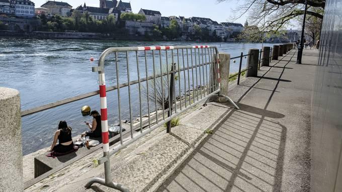 Gitter am Rhein