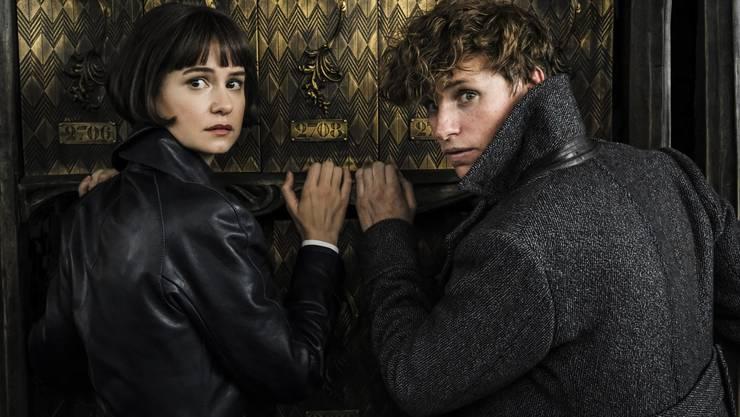 Kauziges Zaubererduo: Tina Goldstein (Katherine Waterston) und Newt Scamander (Eddie Redmayne).