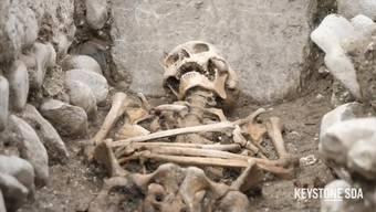 Bei Ausgrabungen in St-Maurice haben Forschende die Überreste einer frühmittelalterlichen Begräbniskirche und eines Friedhofs freigelegt. Die Funde geben neue Einblicke in die Anfänge des Christentums im Wallis. Die Bauweise lasse auf die Bedeutung des Sakralbaus schliessen. Das Mauerwerk sei von hervorragender Machart und die Wände seien wahrscheinlich mit bemaltem Verputz geschmückt gewesen.