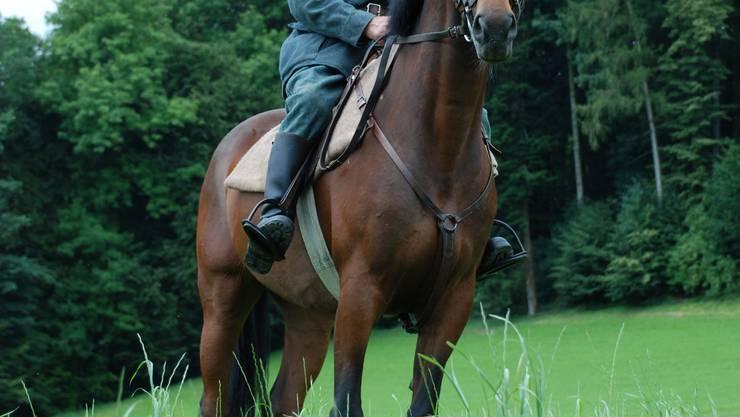 Zur Person: Walter Forster (62) lebt in Dietwil, ist pensionierter Leiter der Grastrocknungsanlage Sins und engagiert sich als OK-Präsident beim Dragonerspringen auf dem Horben, das heute Samstag stattfindet. Hier posiert er auf dem 19-jährigen Ingo. (fh)