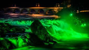 Der Rheinfall im Grünen Gewand