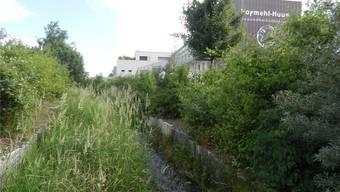 Ungefähr in diesem Bereich des Sagibachs stand früher die Alte Sägerei, die mit Wasserkraft betrieben wurde.