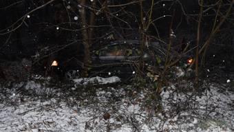 Das Auto landete im Gebüsch.