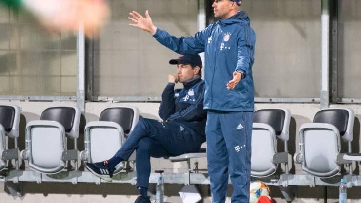 Sebastian Hoeness wird Trainer von Steven Zuber bei Hoffenheim