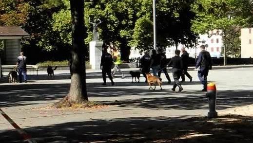 Polizisten durchsuchen das Areal und die Gebäude mit Spürhunden