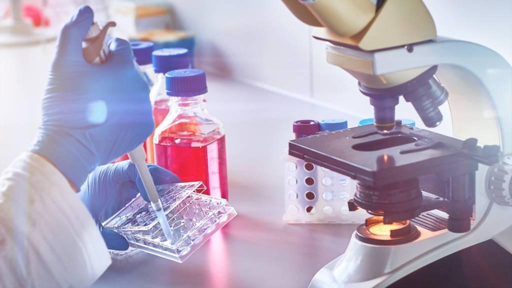 Neue Hoffnung im Kampf gegen das Coronavirus