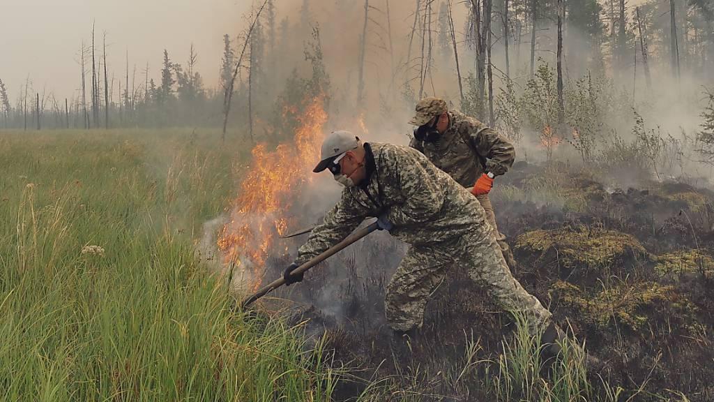 Waldbrände in Russland - Giftiger Rauch breitet sich aus