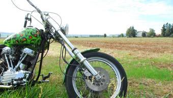 Auf diesem Grundstück – das teils in städtischem, teils in privatem Besitz ist – soll eine Grossüberbauung für Harley Davidson entstehen. fup