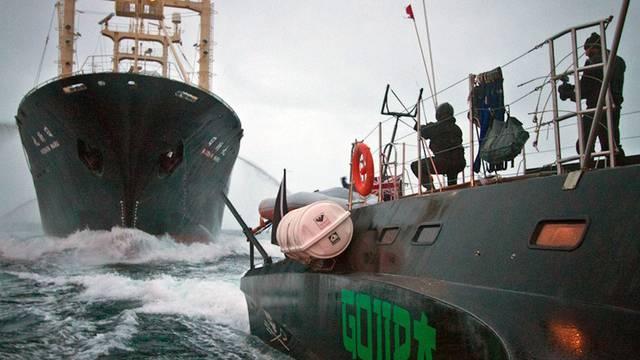 "Sea Shepherd-Aktivisten verfolgen die ""Nisshin Maru"""