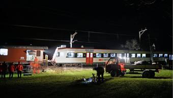 Zug kollidiert im Glarnerland mit sieben Rindern - Alle Tiere tot