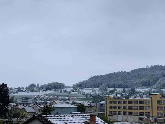 Weisses Erwachen in Reinach.
