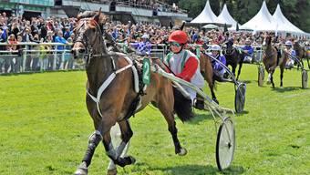 Pferderennen Aarau (12.5.19)