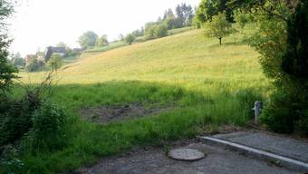 Der Hirziweg (im Vordergrund) soll dem Schwabistalbach (links am Bildrand) entlang gezogen werden. Das Gebiet Gibel rechts von Häusern soll erschlossen werden.  peter weingartner