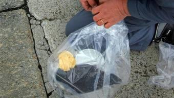 Betroffen sind vor allem tote Reiherenten. Ein Mitarbeiter des Zivilschutues plombiert einen Plastiksack mit dem toten Tier. (Archivbild)