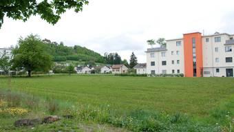 Verdichtetes Wohnen zwischen Wildegg und Staufen (Bild) soll Platz für 8000 Einwohner mehr schaffen. (Archiv)
