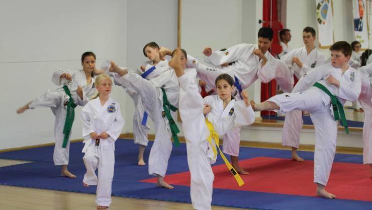 Jung und Alt, Männer und Frauen- Taekwon-Do ist für alle da!