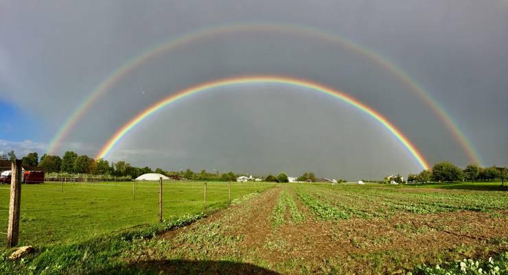 ein Geschenk des Himmels: Doppelte Regenbogenbrücke  Bildrichtung von Bättwil nach Aesch