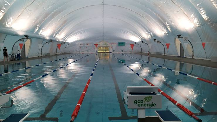 Auf 6 Bahnen trainieren die Schwimmenden.