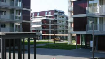 Die Wohnüberbauung Hofächer ist eines der Beispiele, die der Stadtrat in seiner Antwort nennt.