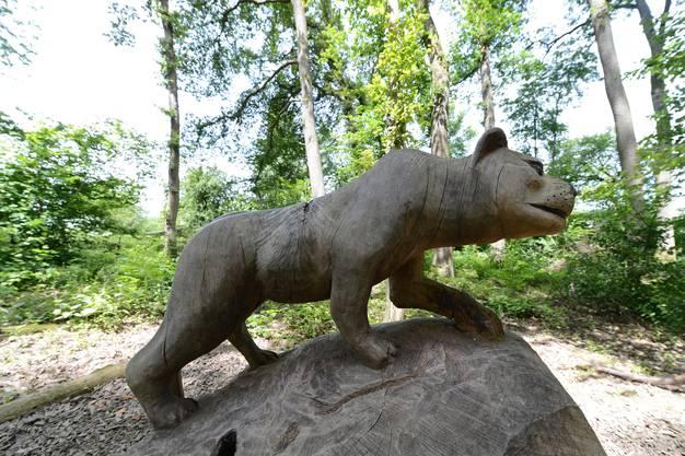 Baghira aus dem Dschungelbuch im Leiwald in Reinach
