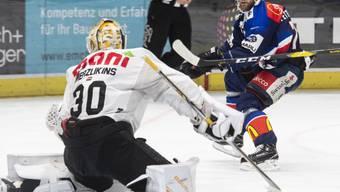 Luganos Goalie Elvis Merzlikins stoppt hier Fredrik Pettersson von den ZSC Lions